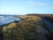 Westküste von Hiddensee, Blick Richtung Norden zum Dornbusch